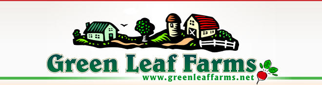 Green Leaf Farms - Michigan Grass Fed Beef, free-ranging chickens and turkeys, and organic farm vegetables